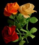 три розы фото