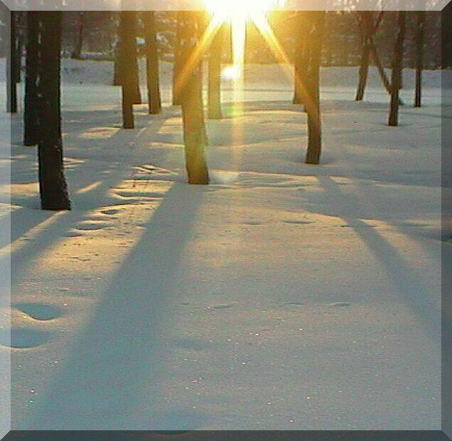 снег блистит и солнце сходит зимним утром