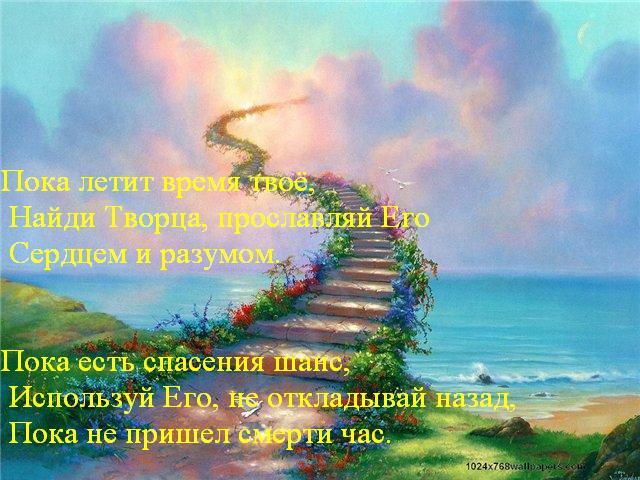 Жизнь идёт твоя